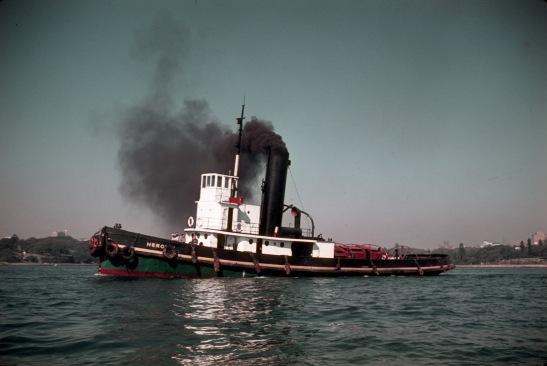 4. Heroine- Sydney's last coal burner tug. May 5, 1962. SHF